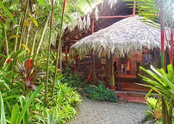 Pure Jungle Spa