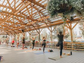Yoga and Kombucha