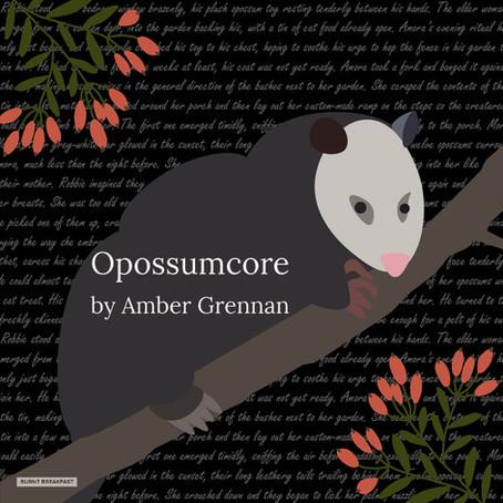 Opossumcore | By Amber Grennan