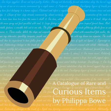 A Catalogue of Rare and Curious Items Found on the Remote Island of Congoja | By Philippa Bowe