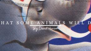 What Some Animals Will Do | David Henson