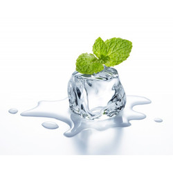 ice mint flavor