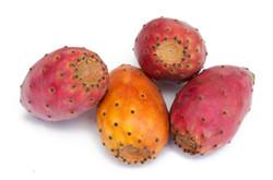 prickly pear flavor