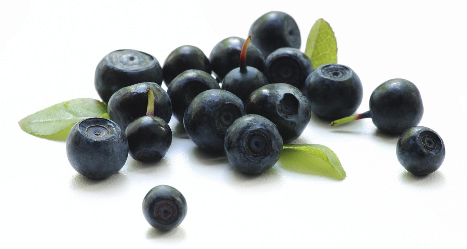 blueberries flavor