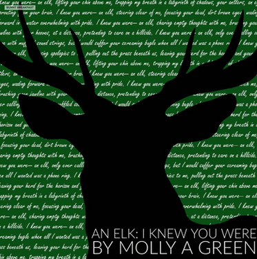 An Elk: I Knew You Were | By Molly A. Green