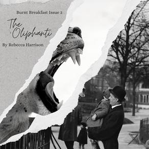 The Oliphanti | By Rebecca Harrison
