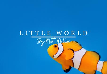 Little World | Matt Mellor