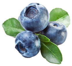 blueberries flavor