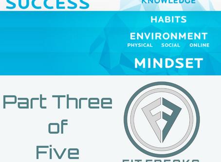 ICEBURG of SUCCESS: Part III