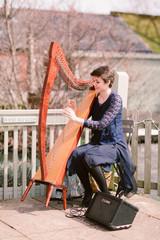Bristol Harpist - Wedding reception at Sopley Mill