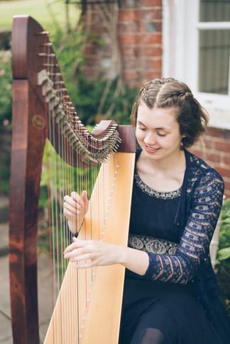 Bristol Harpist - Wedding reception at Goldney Hall, Clifton