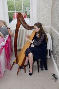 Bristol Harpist - Wedding in The New Forest