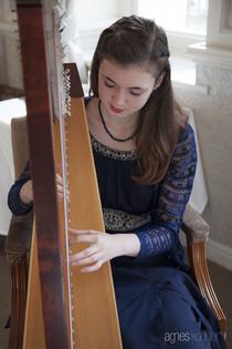 Bristol Harpist - Wedding Breakfast at the Royal Bath Hotel