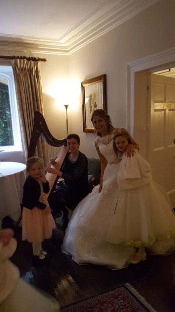 Bristol Harpist - Wedding reception Bath