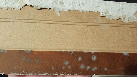 Mold on baseboard from water leak in Murrieta, CA home