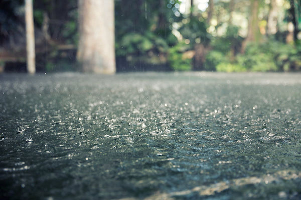 prevent storm water damage tips