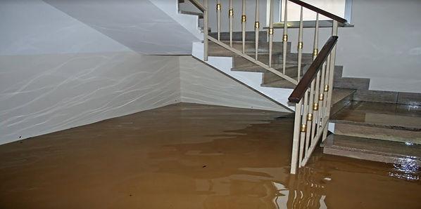 Water Damage Help