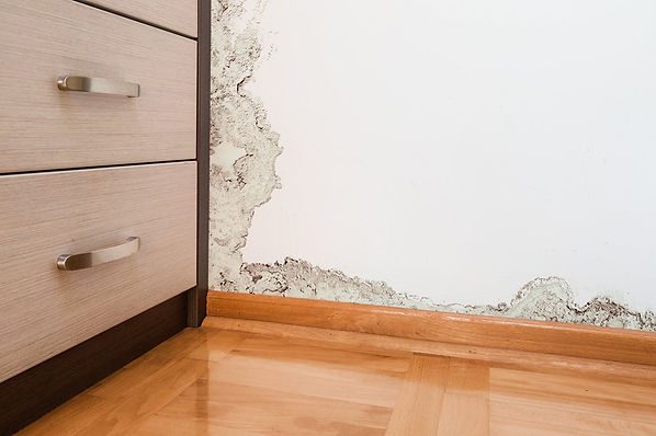 Canyon Lake Water mitigation company, What Is Water Mitigation, The water mitigation process, Canyon Lake water damage restoration, best Canyon Lake water mitigation
