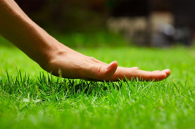 hand above grass, costly home myths, home maintenance mistakes, home maintenance costing you money, costly home mistakes, save money on home maintenance