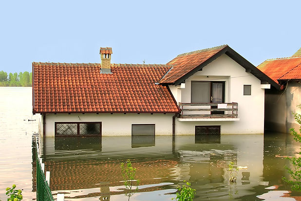 Water Damage Resistant Materials