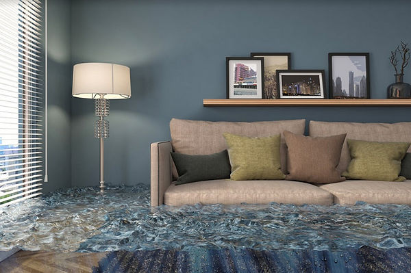 Temecula Top Rated Water Damage