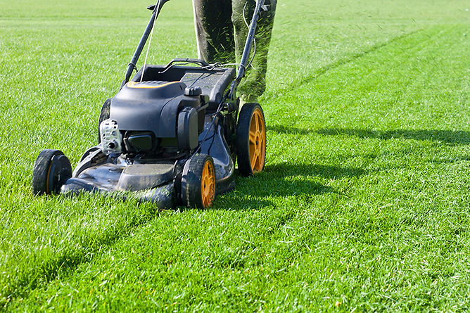 Things Every Homeowner Should Know Mowing Loan