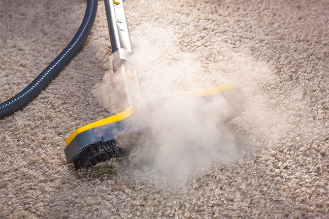 Cleaning Mold From Carpet Dry Steam Cleaner