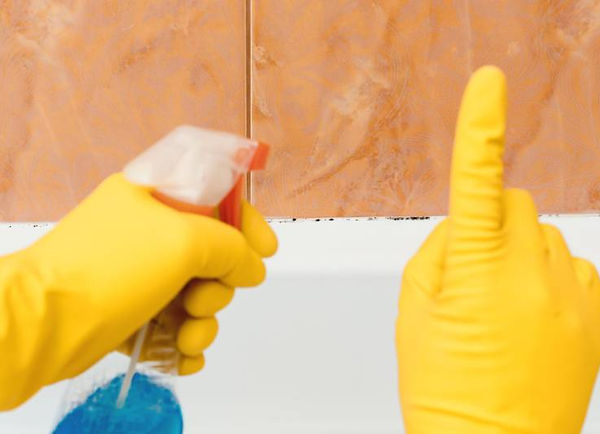 Get Rid of Bathroom Mold, remove bathroom mold, prevent bathroom mold,  clean bathroom mold, bathroom mold health risks