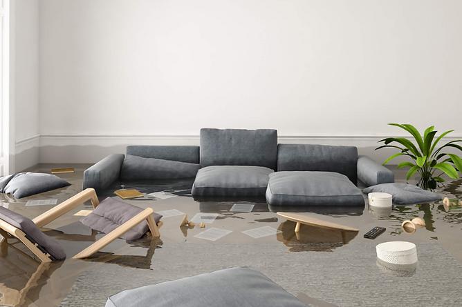 Restoring Water Damaged Furniture Flooded Living Room, restoring water-damaged furniture, water damaged furniture help, fix wet furniture