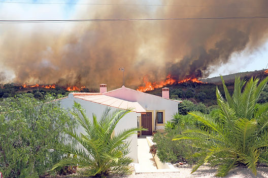 protecting your home against wildfires