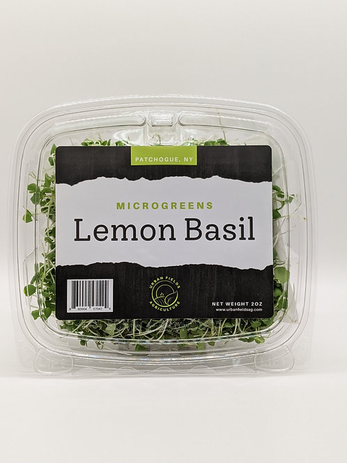 Lemon Basil Microgreens