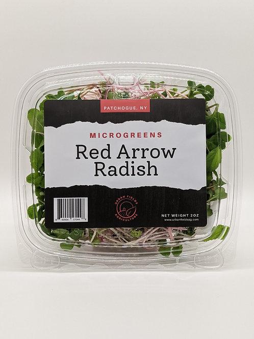 Red Arrow Radish Microgreens