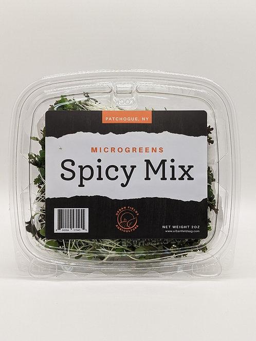 Spicy Microgreen Mix