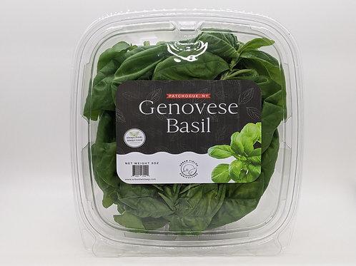 Genovese Basil- 3oz