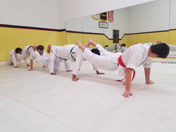 Strength training in Taekwondo