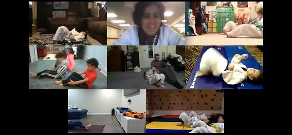 Martial Arts, Self-Defense, winter camp, spring camp, summer camp, teacher workday camps, snow day camp, before-school, after-school, online learning assistance, burke, manassas, fairfax, taekwondo, judo, kumdo, jiu jitsu, day camp with virtual learning support