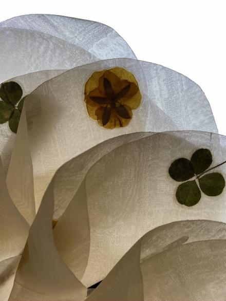 Éventail Tulipe Fleurs Tayuh