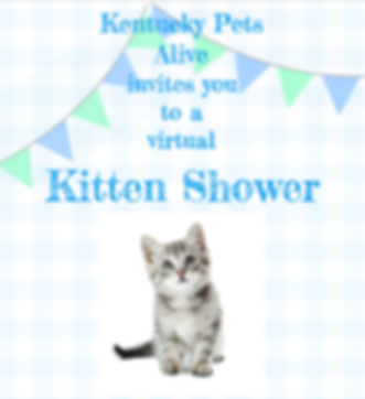 Kittens shower.png