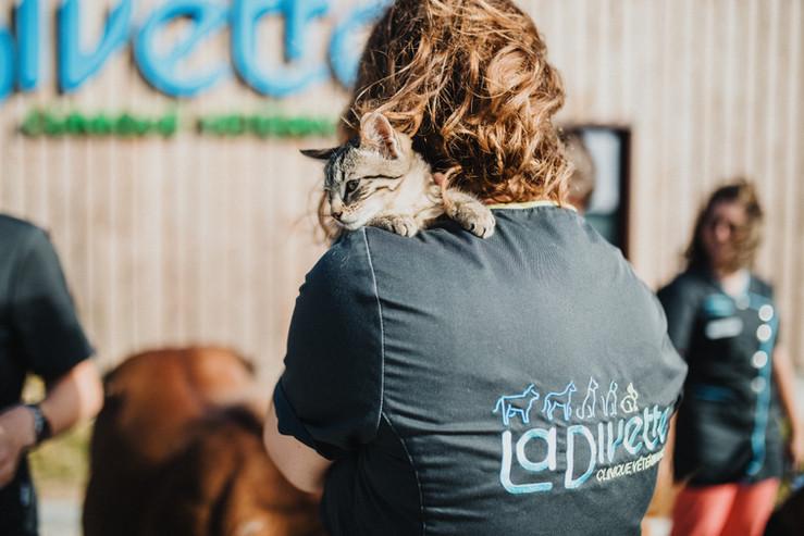 Clinique Vétérinaire proche de Cherbourg et Les Pieux