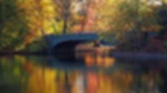 PB040246 boathouse bridge email.jpg