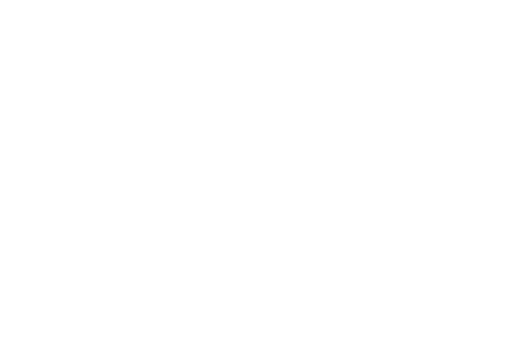 WINNER - Wales International Film Festiv