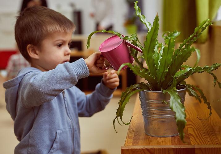 Toddlers - Żłobek Sopot - Montessori