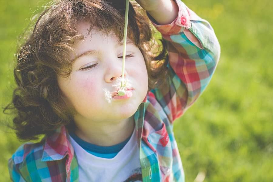 Junge mit Pusteblume
