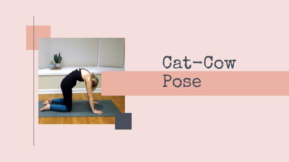 Cat-Cow Pose: Basic Beginner Yoga Pose