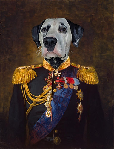 Admiral Alexander Portrait of Your/Friends/Family Pet gallery wrap