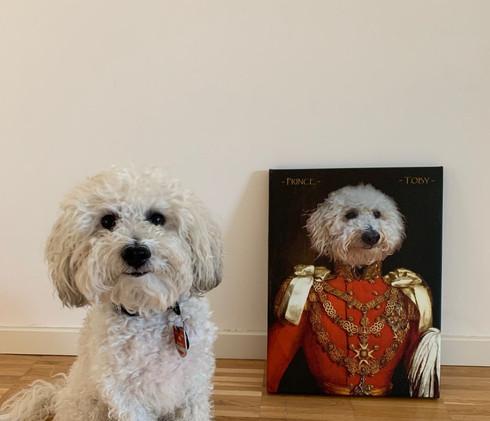 prince_albert_royal_portrait