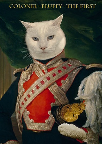 Historic Portrait of Your Pet in Military attire
