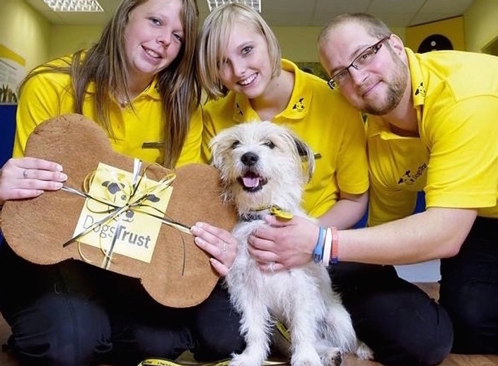 Dogs Trust team helping a dog in need