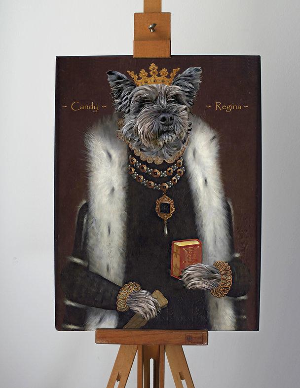 Dog in uniform portrait