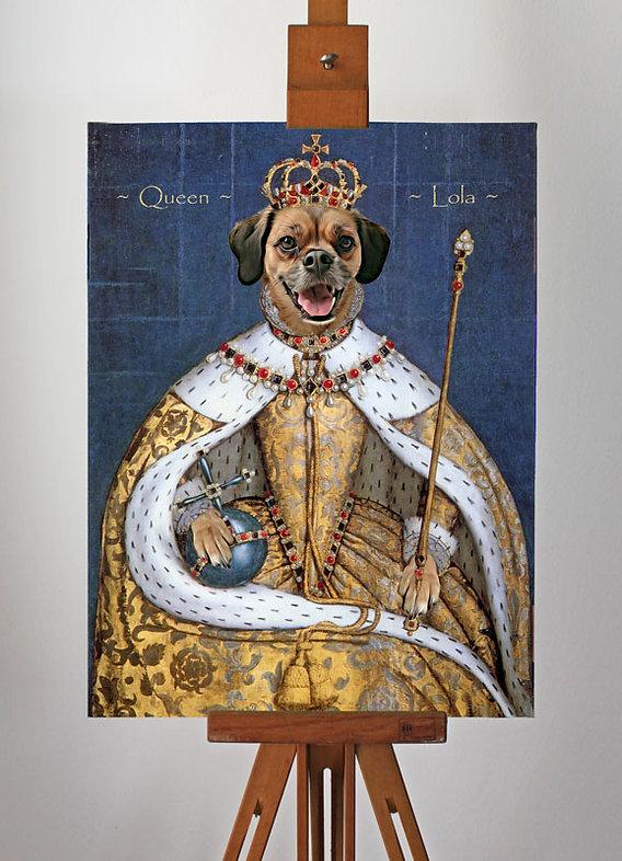 Dog in costume portrait